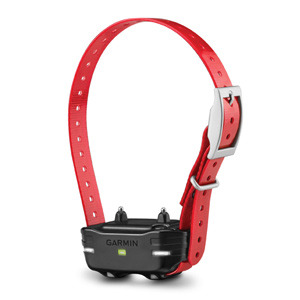 PT 10 Dog Device Red Collar